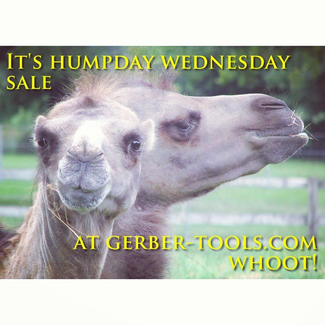Hump day sale going on now at Gerber-Tools.com. Check out our Facebook page at facebook.com/GerberKnivesAndTools for details. knifecommunity GerberKnives Gerber machete humpday